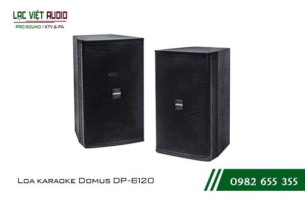 Giới thiệu về sản phẩm Loa Domus DP 6120