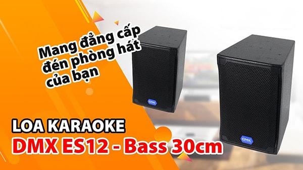 Tính năng Loa DMX ES 12 - Lạc Việt Audio