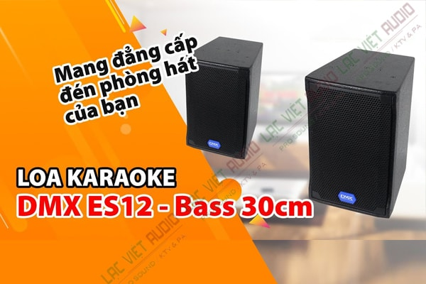 Tính năng Loa DMX ES 12+ - Lạc Việt Audio