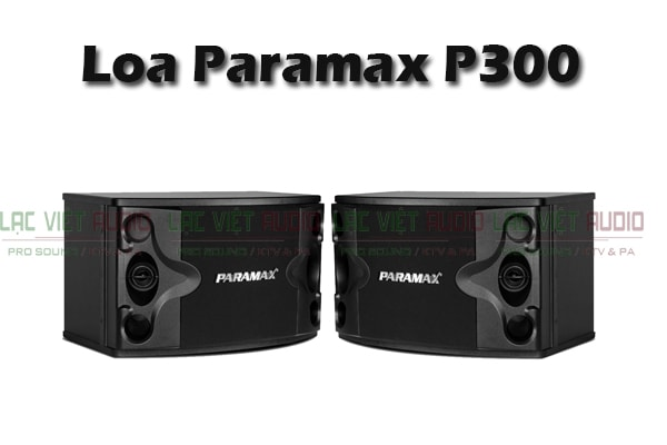 Loa karaoke paramax P300 - Lạc Việt Audio