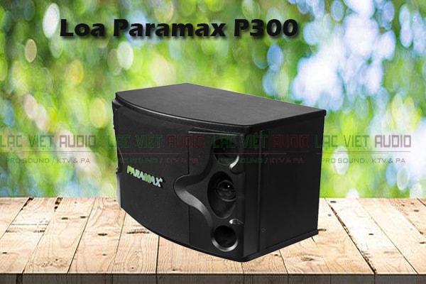 Tính năng Loa karaoke paramax P300 - Lạc Việt Audio