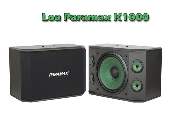 Thiết kế Loa karaoke paramax K1000 - Lạc Việt Audio