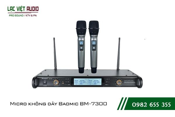 Giới thiệu Micro không dây Baomic BM7300