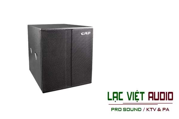 Giới thiệu về sản phẩm Loa CAF W18S pro