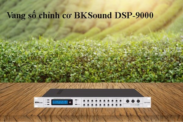 Vang số chỉnh cơ BKSound DSP-9000 - Lạc Việt Audio