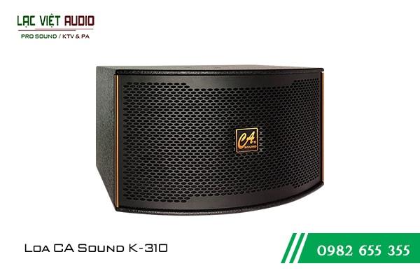 Giới thiệu về sản phẩm Loa CA Sound K310