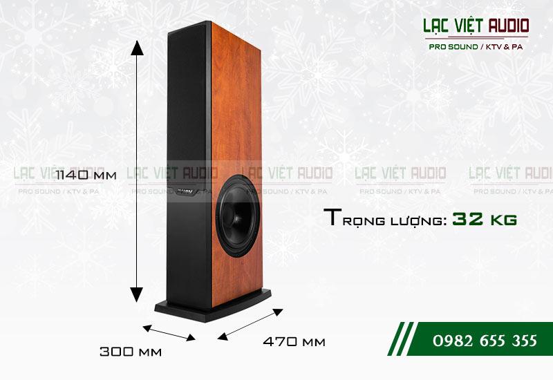 Thiết kế của sản phẩm Loa Paramax D2000