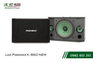 Giới thiệu về sản phẩm Loa Paramax K850 NEW