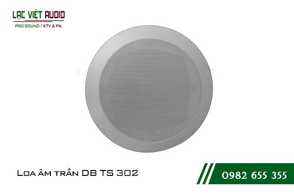 Loa âm trần DB TS 302