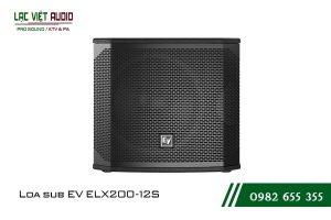 Giới thiệu về sản phẩm Loa sub EV ELX200 12S