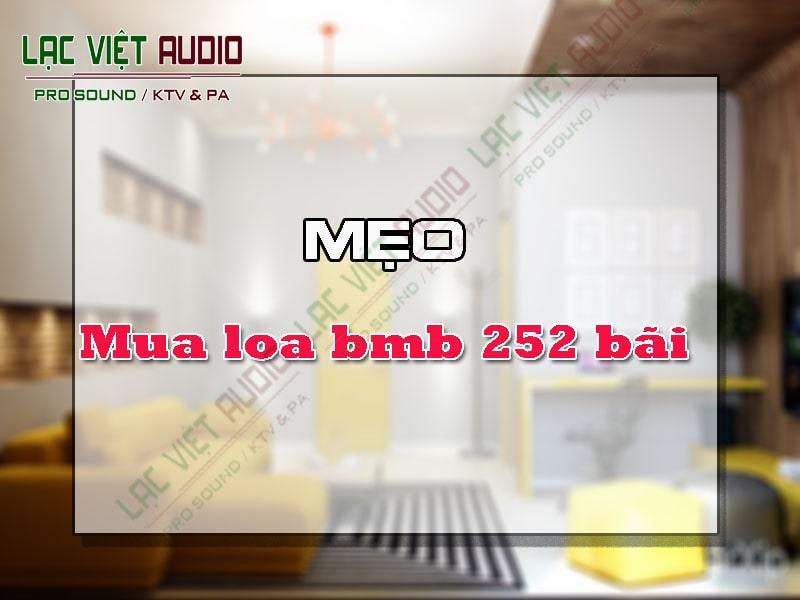 Giới thiệu về sản phẩm loa bmb 252 bãi.