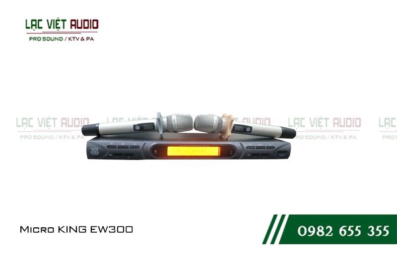Micro không dây KING EW 300