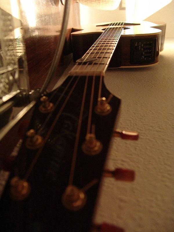 Acoustics – những thông tin cần biết