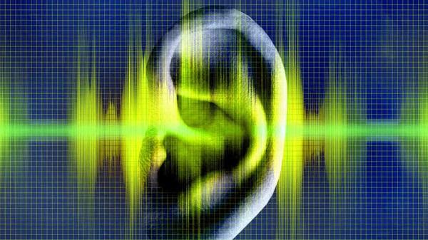Tính trung thực của âm thanh hay