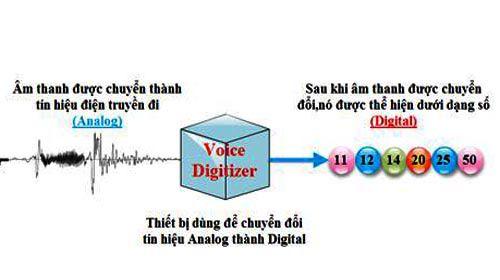 Hoạt động chuyển đổi tín hiệu Analog sang Digital
