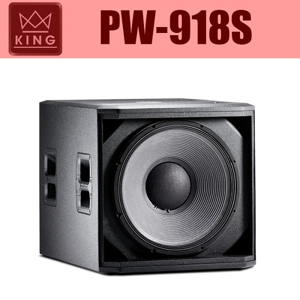 Loa hội trường KING PW 918S