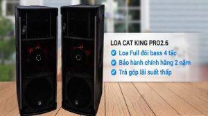 Loa hội trường Cat King giá rẻ có những đặc điểm gì