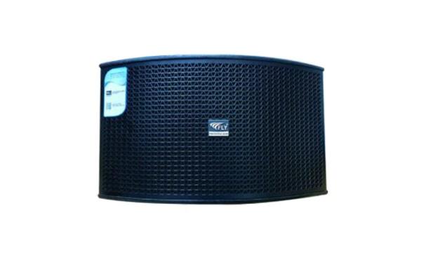 Loa karaoke Fly KR550