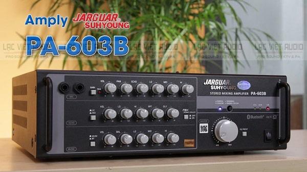 Amply có chức năng khuếch đại và xử lý âm thanh cơ bản