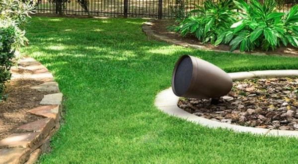 Loa cà phê sân vườn sẽ trở thành hướng trong tương lai
